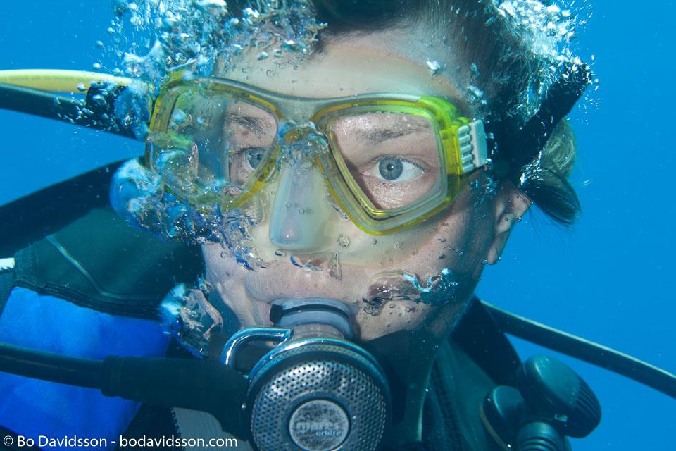 BD-100922-St-Johns-2020-Homo-sapiens.-Linnaeus.-1758-[Diver].jpg